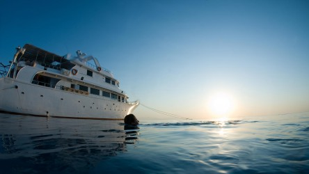 Liveaboard Diving Similan Islands With Aussie Divers Phuket