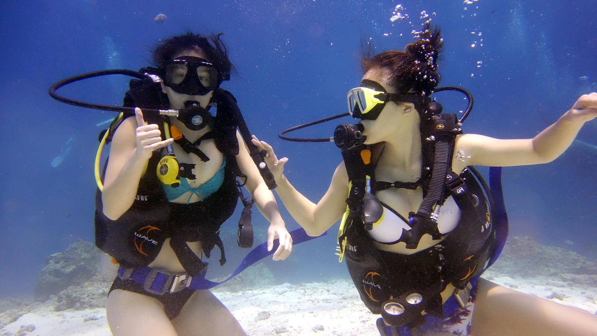 Learn to Scuba Dive – Understand Your Options
