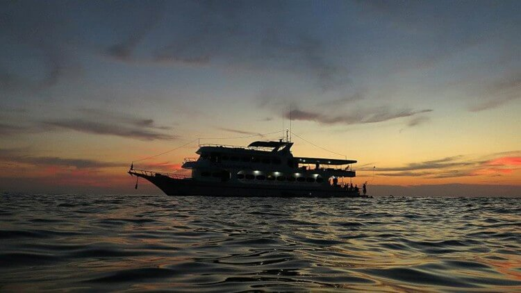 MV Pawara Sunset Liveaboard Phuket Thailand Scuba Diving