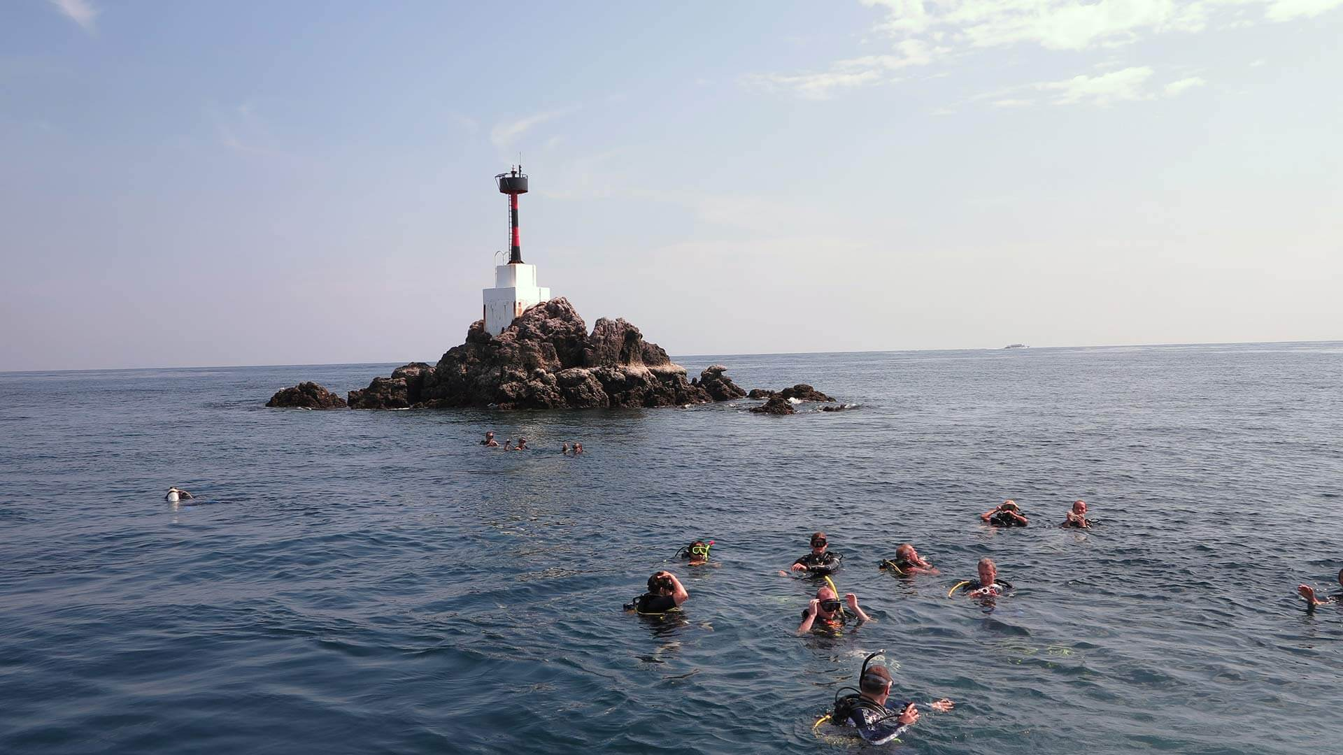 Shark Point