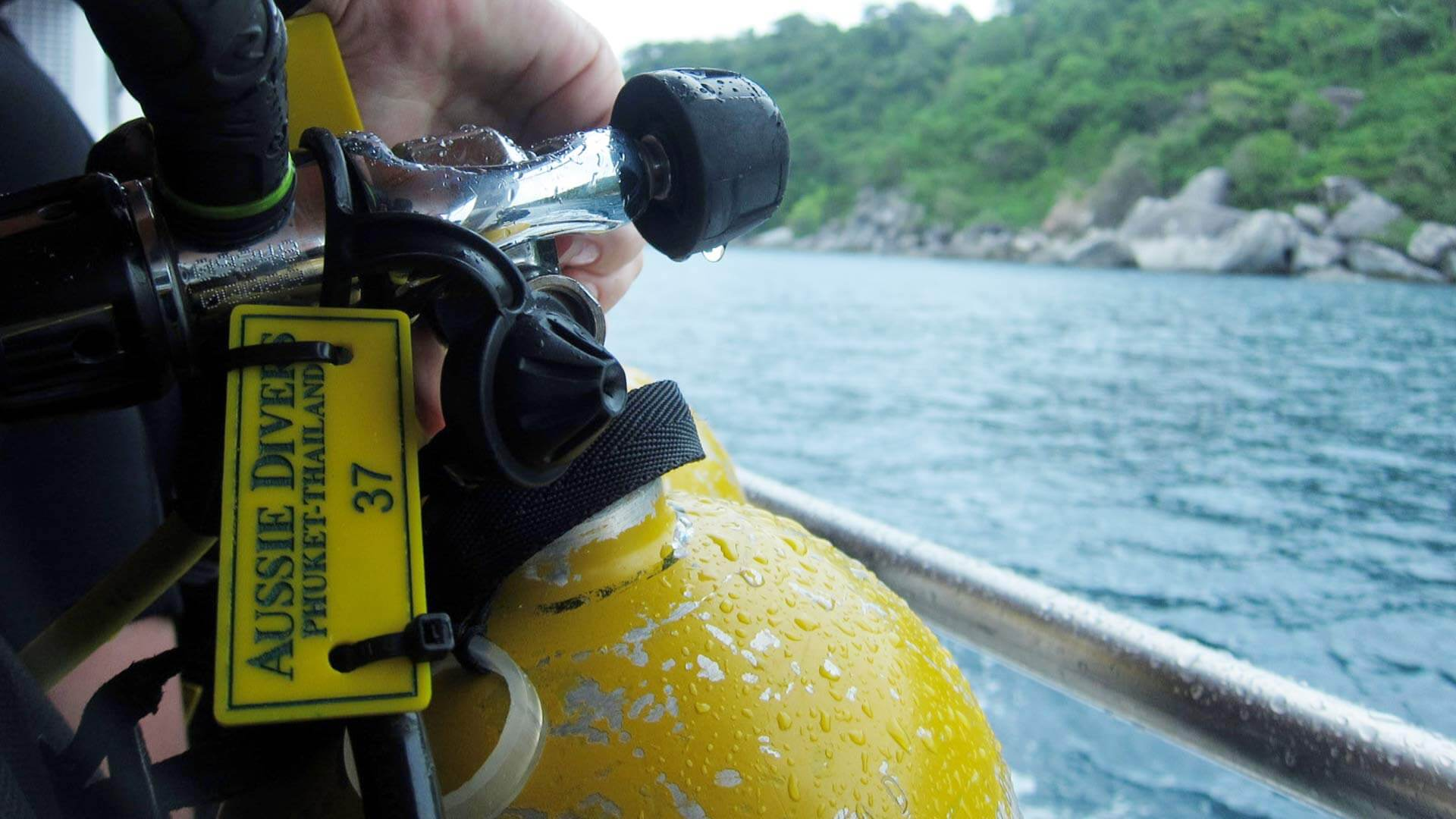 PADI courses that could save you a lot of money