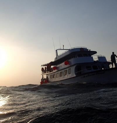 Scuba Diving Day Trip Phuket Shark Point Best