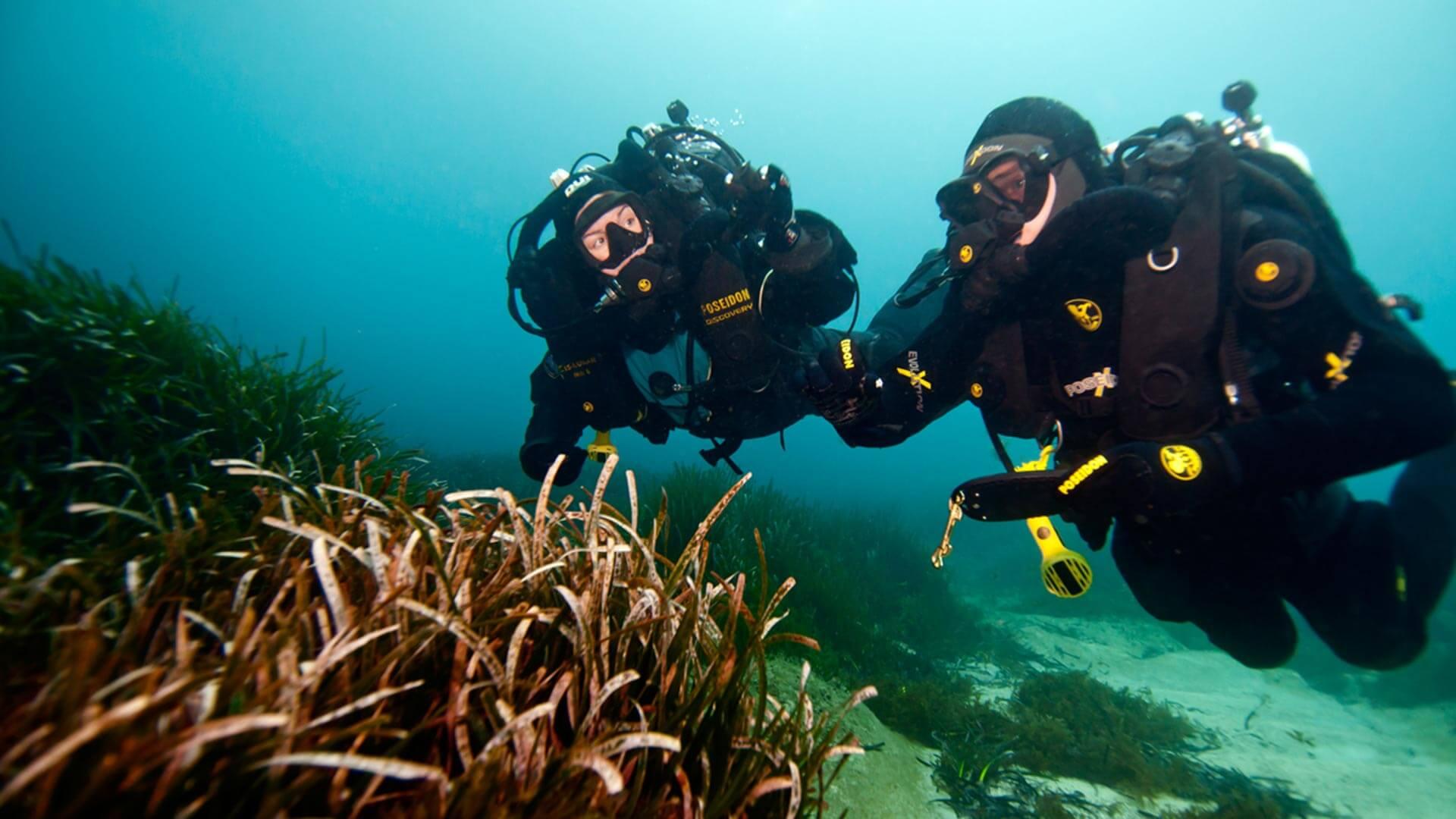 Tec Deep Diver