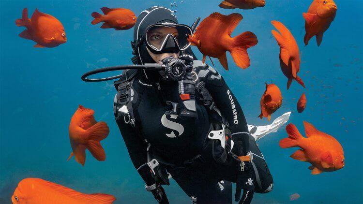 Scubapro Diver Display Centre Aussie Divers Phuket