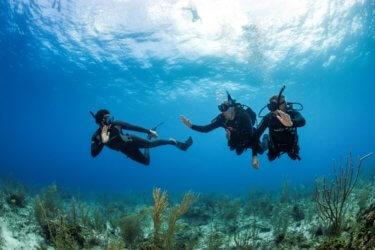 PADI Freediver Courses Aussie Divers Phuket