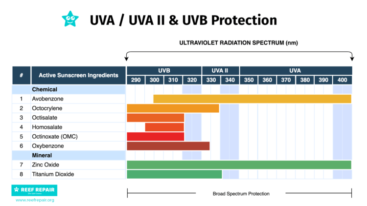 Active Sunscreen Ingredients UV UVA UVB Wavelength Protection Graph