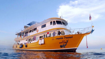 Aussie Divers Phuket MV Gentle Giant Liveaboard