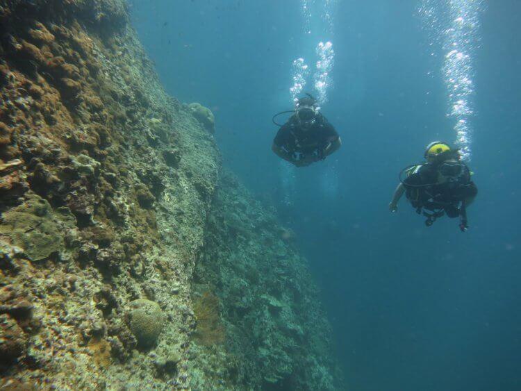 Twin Phi Phi Scuba Diving Aussie Divers