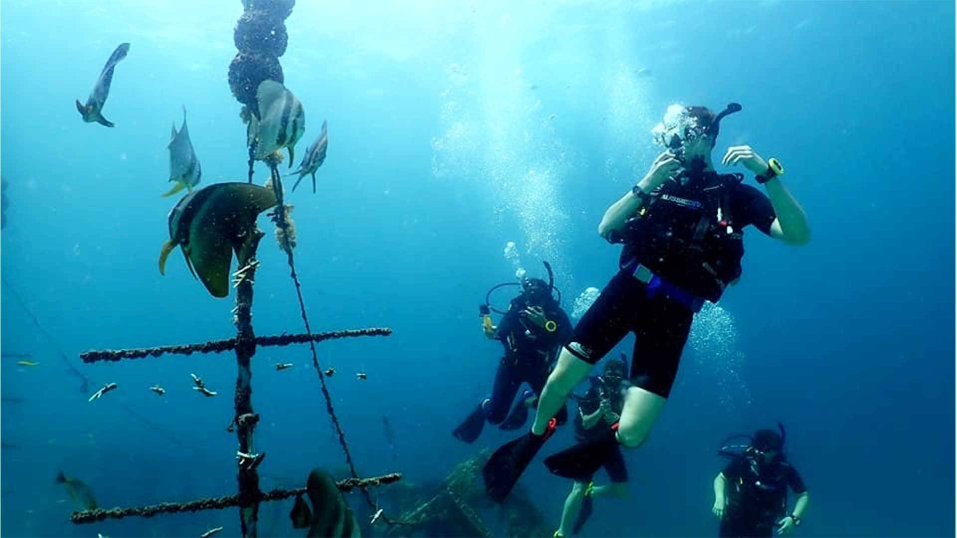 Can Learning to Scuba Dive be Good for Your Brain