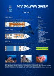 MV Dolphin Queen Layout Similan Islands Liveaboard