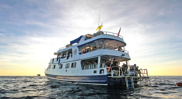 Manta Queen 2 Rear View Aussie Divers