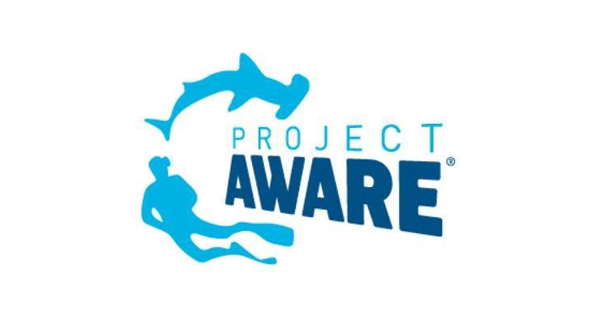 Project Aware Video