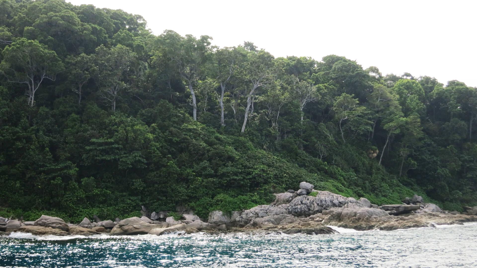 Three Trees Island 9